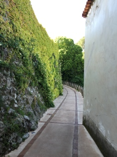 The vine covered walls